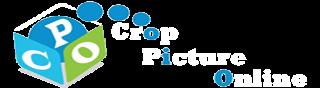 Crop Picture Online